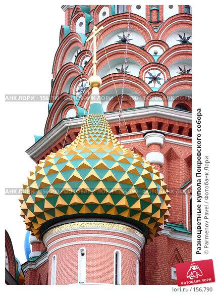 Разноцветные купола Покровского собора, фото № 156790, снято 21 декабря 2007 г. (c) Parmenov Pavel / Фотобанк Лори
