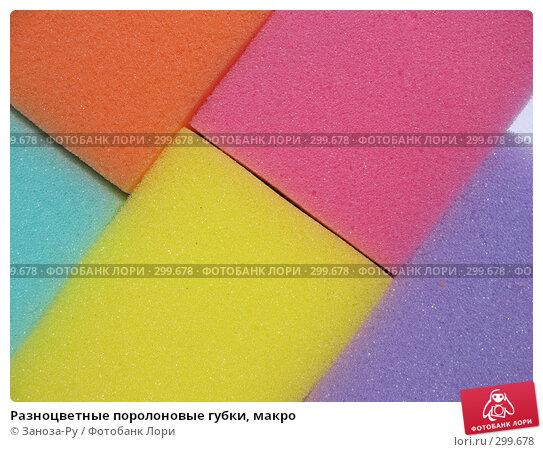 Купить «Разноцветные поролоновые губки, макро», фото № 299678, снято 24 мая 2008 г. (c) Заноза-Ру / Фотобанк Лори