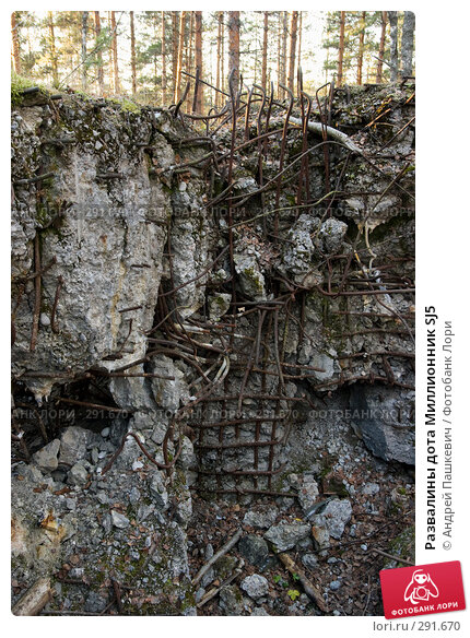 Развалины дота Миллионник SJ5, фото № 291670, снято 4 ноября 2007 г. (c) Андрей Пашкевич / Фотобанк Лори