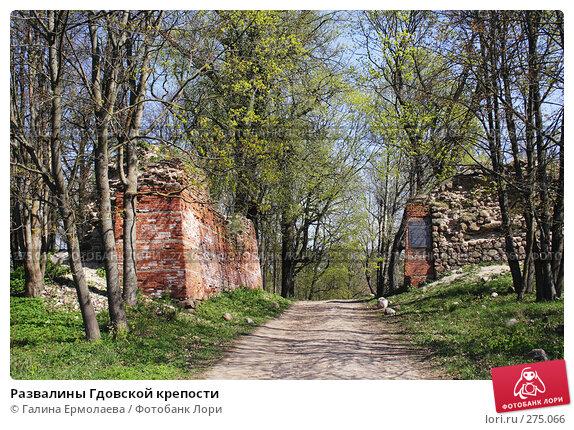 Развалины Гдовской крепости, фото № 275066, снято 3 мая 2008 г. (c) Галина Ермолаева / Фотобанк Лори