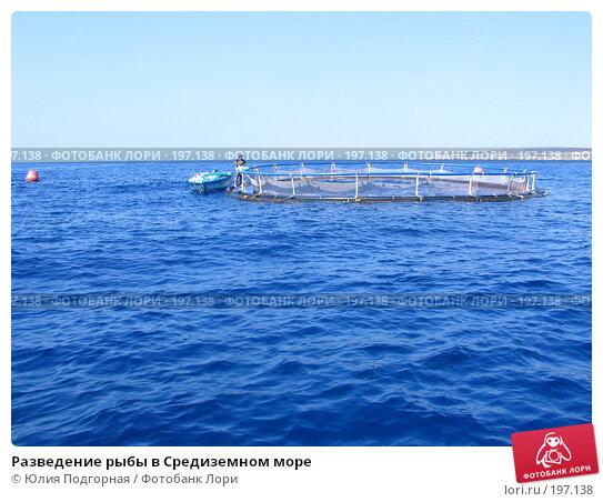 Разведение рыбы в Средиземном море, фото № 197138, снято 10 августа 2006 г. (c) Юлия Селезнева / Фотобанк Лори