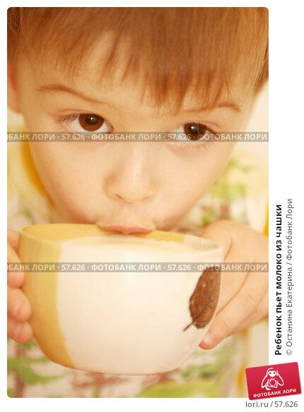 Ребенок пьет молоко из чашки, фото № 57626, снято 26 октября 2006 г. (c) Останина Екатерина / Фотобанк Лори