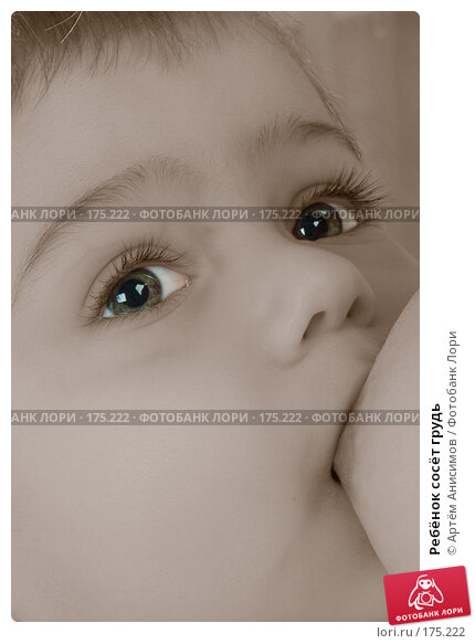 Ребёнок сосёт грудь, фото № 175222, снято 12 января 2008 г. (c) Артём Анисимов / Фотобанк Лори