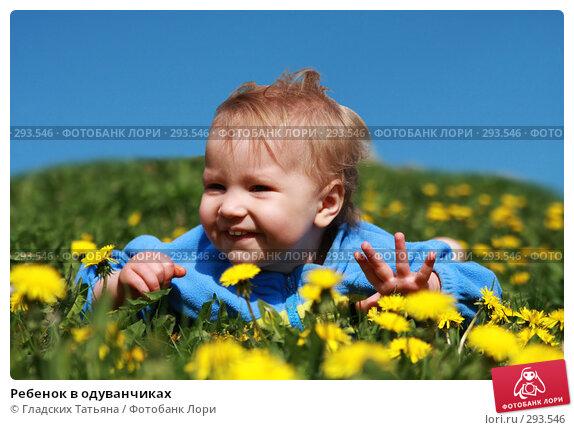 Купить «Ребенок в одуванчиках», фото № 293546, снято 22 марта 2018 г. (c) Гладских Татьяна / Фотобанк Лори