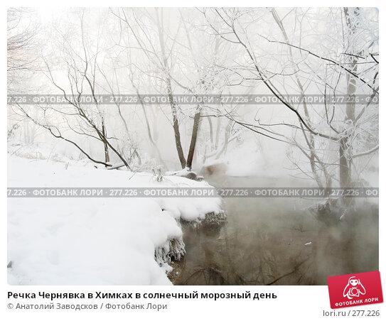 Речка Чернявка в Химках в солнечный морозный день, фото № 277226, снято 25 ноября 2004 г. (c) Анатолий Заводсков / Фотобанк Лори