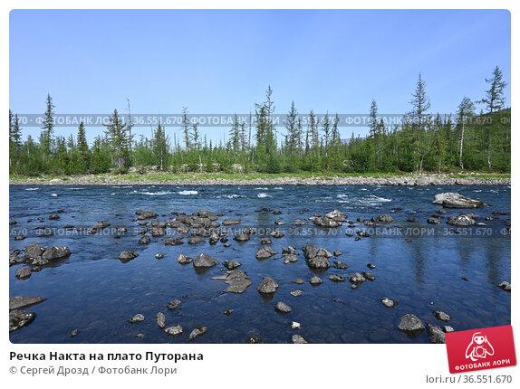 Речка Накта на плато Путорана. Стоковое фото, фотограф Сергей Дрозд / Фотобанк Лори