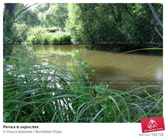 Речка в зарослях, фото № 159718, снято 16 июля 2007 г. (c) Ольга Шилина / Фотобанк Лори