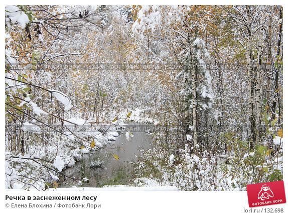 Купить «Речка в заснеженном лесу», фото № 132698, снято 16 октября 2007 г. (c) Елена Блохина / Фотобанк Лори