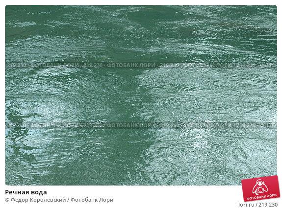 Купить «Речная вода», фото № 219230, снято 7 мая 2005 г. (c) Федор Королевский / Фотобанк Лори
