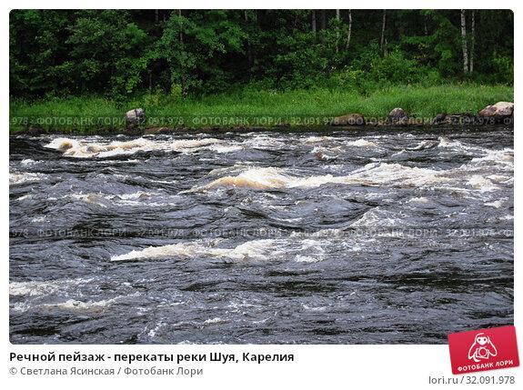Купить «Речной пейзаж - перекаты реки Шуя, Карелия», фото № 32091978, снято 20 июля 2008 г. (c) Светлана Ясинская / Фотобанк Лори