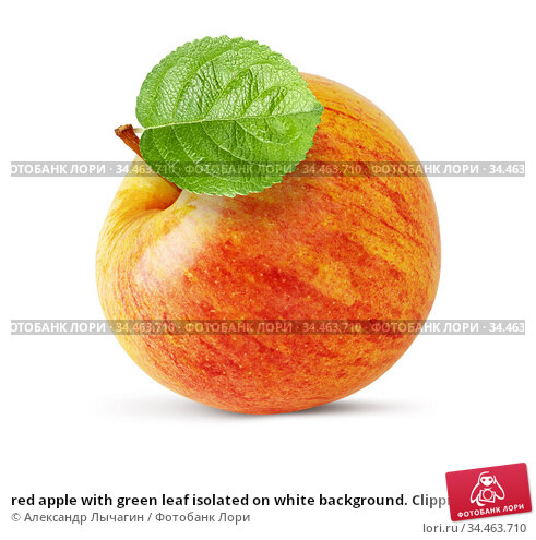 red apple with green leaf isolated on white background. Clipping path. Стоковое фото, фотограф Александр Лычагин / Фотобанк Лори