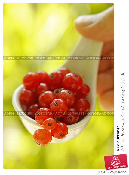 Купить «Red currants.», фото № 28700558, снято 23 июня 2018 г. (c) easy Fotostock / Фотобанк Лори