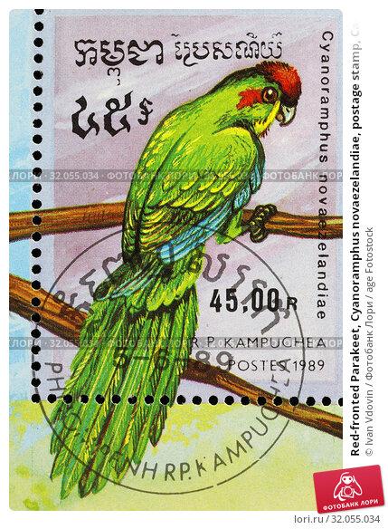 Red-fronted Parakeet, Cyanoramphus novaezelandiae, postage stamp, Cambodia, Kampuchea, 1989. (2014 год). Редакционное фото, фотограф Ivan Vdovin / age Fotostock / Фотобанк Лори