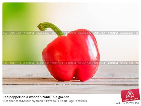 Red pepper on a wooden table in a garden. Стоковое фото, фотограф Zoonar.com/Kasper Nymann / age Fotostock / Фотобанк Лори