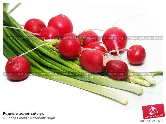 Купить «Редис и зеленый лук», фото № 242618, снято 17 декабря 2017 г. (c) Павел Савин / Фотобанк Лори