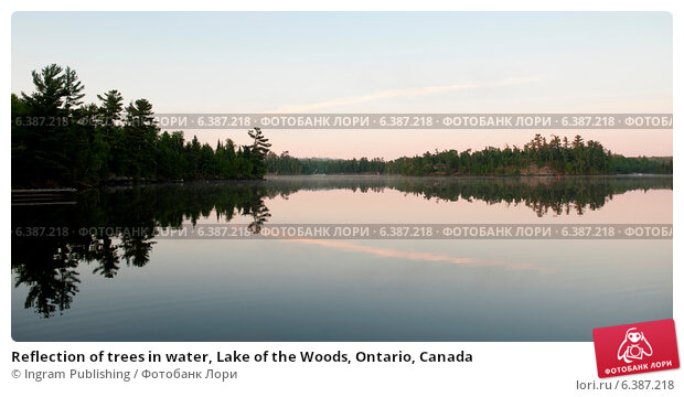 in the lake of the woods term paper Lake of the woods lake properties browse 1 lake of the woods lake homes  recent studies indicate short term population goals for lake sturgeon have been met.