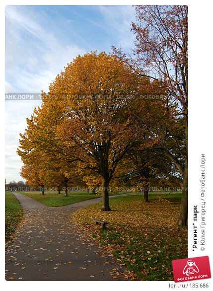 """Регент"" парк, фото № 185686, снято 3 ноября 2007 г. (c) Юлия Севастьянова / Фотобанк Лори"