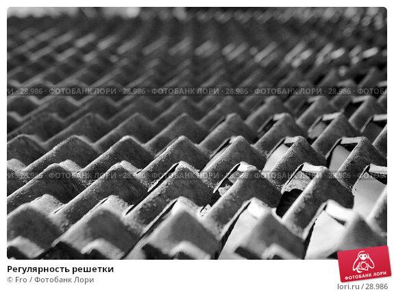 Регулярность решетки, фото № 28986, снято 1 апреля 2007 г. (c) Fro / Фотобанк Лори