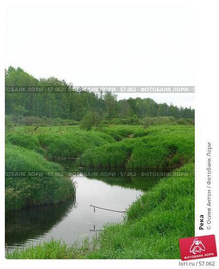 Река, фото № 57062, снято 31 мая 2007 г. (c) Осиев Антон / Фотобанк Лори