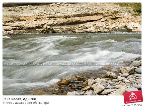 Река Белая, Адыгея, фото № 125366, снято 2 сентября 2007 г. (c) Игорь Дашко / Фотобанк Лори