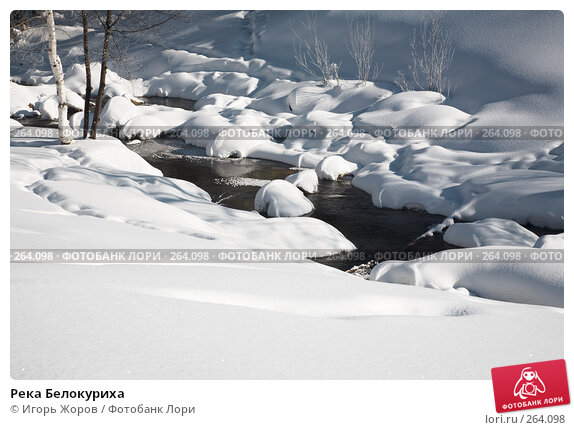 Река Белокуриха, фото № 264098, снято 20 февраля 2008 г. (c) Игорь Жоров / Фотобанк Лори