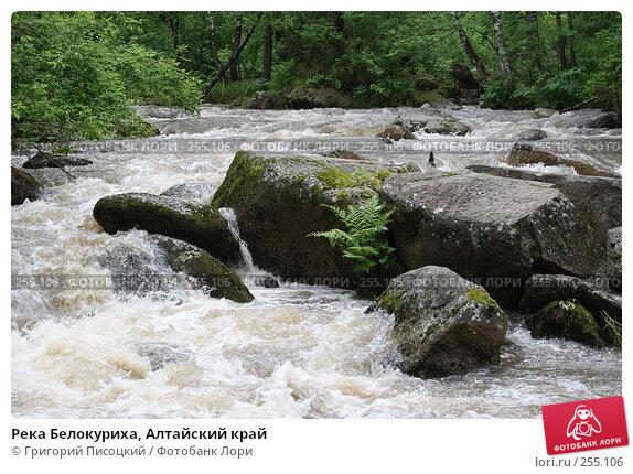 Река Белокуриха, Алтайский край, фото № 255106, снято 3 июня 2007 г. (c) Григорий Писоцкий / Фотобанк Лори