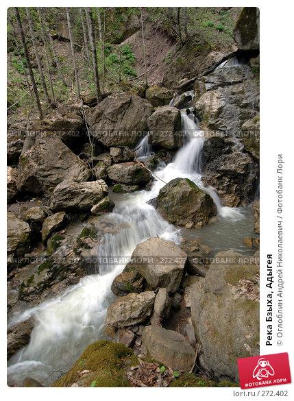 Купить «Река Бзыха, Адыгея», фото № 272402, снято 19 апреля 2008 г. (c) Оглоблин Андрей Николаевич / Фотобанк Лори