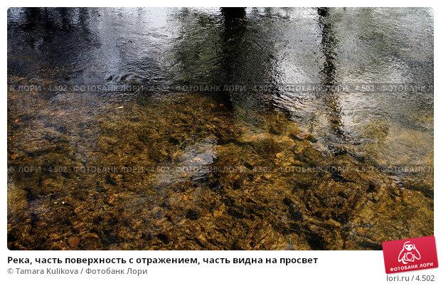 Река, часть поверхность с отражением, часть видна на просвет, фото № 4502, снято 5 июня 2006 г. (c) Tamara Kulikova / Фотобанк Лори