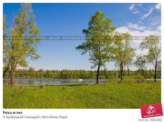 Купить «Река и лес», фото № 268430, снято 9 мая 2004 г. (c) Кравецкий Геннадий / Фотобанк Лори