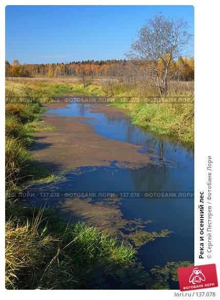 Река и осенний лес, фото № 137078, снято 29 сентября 2007 г. (c) Сергей Пестерев / Фотобанк Лори