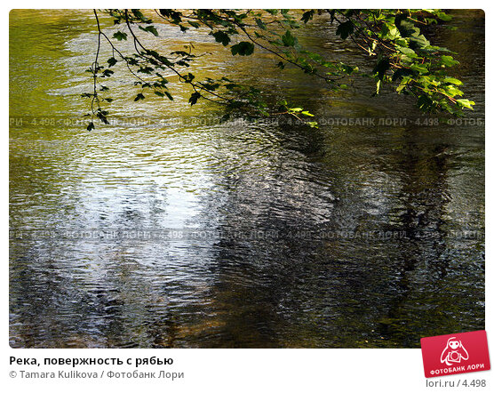 Река, повержность с рябью, фото № 4498, снято 5 июня 2006 г. (c) Tamara Kulikova / Фотобанк Лори