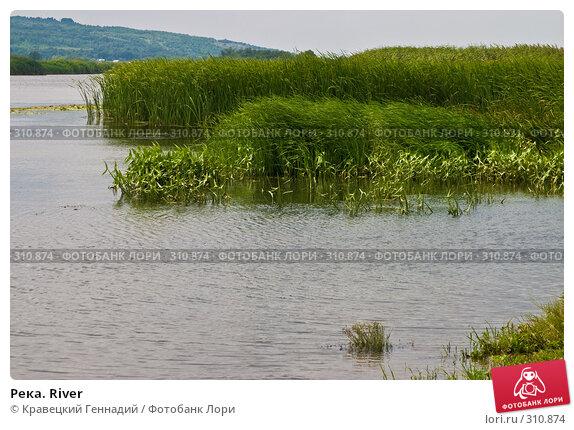 Река. River, фото № 310874, снято 11 августа 2004 г. (c) Кравецкий Геннадий / Фотобанк Лори