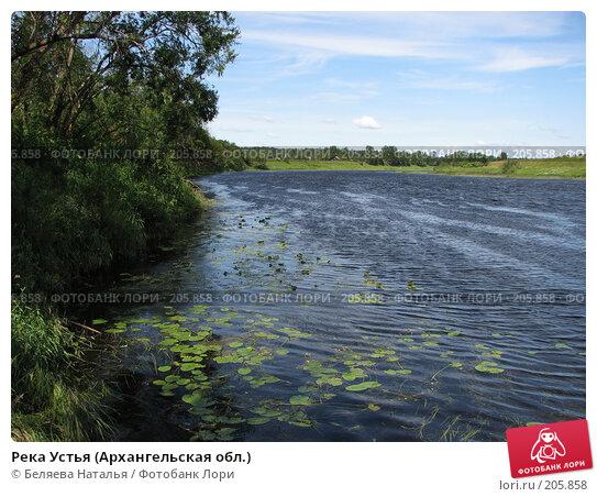 Река Устья (Архангельская обл.), фото № 205858, снято 22 июля 2007 г. (c) Беляева Наталья / Фотобанк Лори