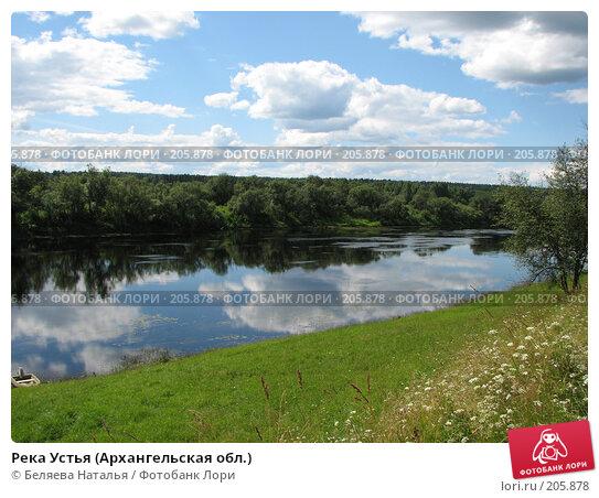 Река Устья (Архангельская обл.), фото № 205878, снято 24 июля 2007 г. (c) Беляева Наталья / Фотобанк Лори