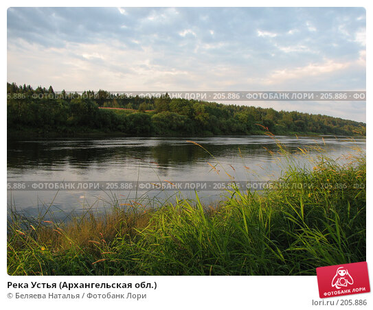 Река Устья (Архангельская обл.), фото № 205886, снято 26 июля 2007 г. (c) Беляева Наталья / Фотобанк Лори