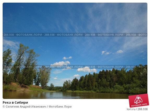 Река в Сибири, фото № 288938, снято 12 июня 2007 г. (c) Селигеев Андрей Иванович / Фотобанк Лори