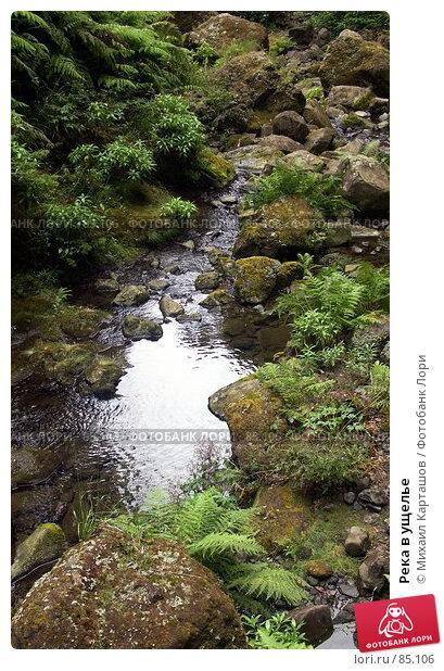 Река в ущелье, эксклюзивное фото № 85106, снято 2 августа 2007 г. (c) Михаил Карташов / Фотобанк Лори