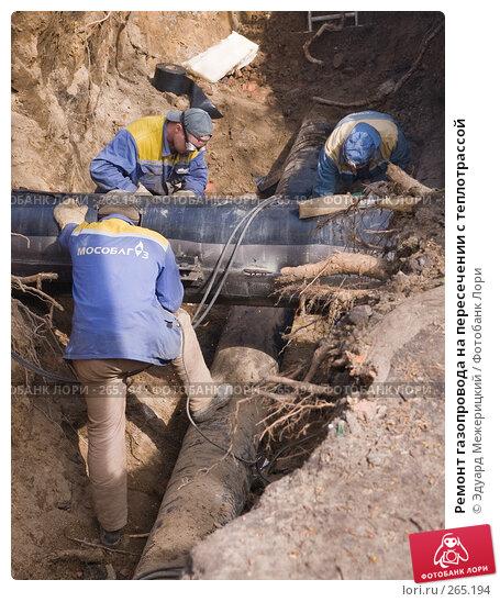 Купить «Ремонт газопровода на пересечении с теплотрассой», фото № 265194, снято 23 апреля 2008 г. (c) Эдуард Межерицкий / Фотобанк Лори