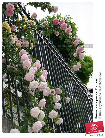 Решетка в розах. Париж., фото № 43746, снято 8 мая 2007 г. (c) Юлия Кузнецова / Фотобанк Лори