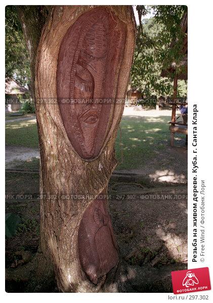 Резьба на живом дереве. Куба. г. Санта Клара, эксклюзивное фото № 297302, снято 20 июля 2017 г. (c) Free Wind / Фотобанк Лори
