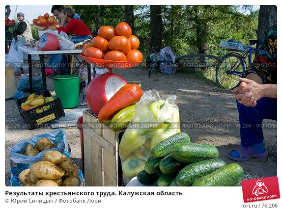 Результаты крестьянского труда. Калужская область, фото № 76206, снято 11 августа 2007 г. (c) Юрий Синицын / Фотобанк Лори