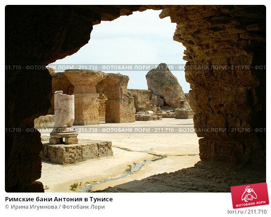 Римские бани Антония в Тунисе, фото № 211710, снято 12 июня 2006 г. (c) Ирина Игумнова / Фотобанк Лори