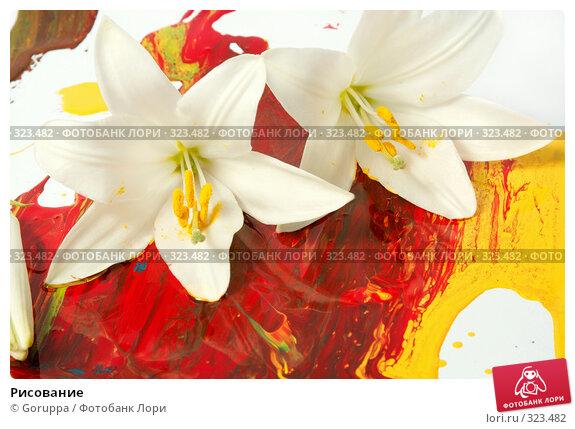 Купить «Рисование», фото № 323482, снято 14 июня 2008 г. (c) Goruppa / Фотобанк Лори