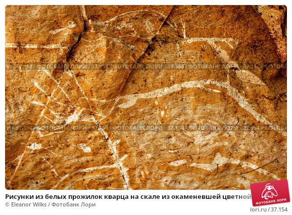 Купить «Рисунки из белых прожилок кварца на скале из окаменевшей цветной глины», фото № 37154, снято 24 мая 2007 г. (c) Eleanor Wilks / Фотобанк Лори