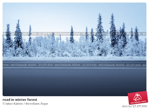 Купить «road in winter forest», фото № 27377910, снято 21 ноября 2017 г. (c) Iakov Kalinin / Фотобанк Лори