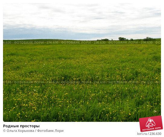Родные просторы, фото № 236630, снято 11 июня 2007 г. (c) Ольга Хорькова / Фотобанк Лори