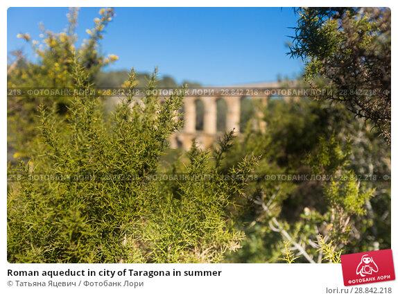 Купить «Roman aqueduct in city of Taragona in summer», фото № 28842218, снято 31 января 2018 г. (c) Татьяна Яцевич / Фотобанк Лори