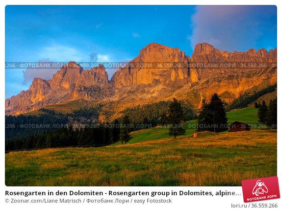 Rosengarten in den Dolomiten - Rosengarten group in Dolomites, alpine... Стоковое фото, фотограф Zoonar.com/Liane Matrisch / easy Fotostock / Фотобанк Лори