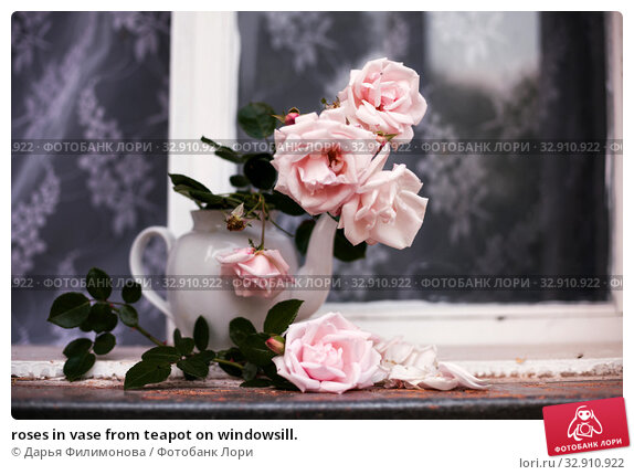 roses in vase from teapot on windowsill. Стоковое фото, фотограф Дарья Филимонова / Фотобанк Лори