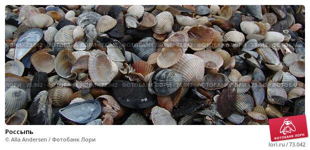 Россыпь, фото № 73042, снято 18 ноября 2005 г. (c) Alla Andersen / Фотобанк Лори